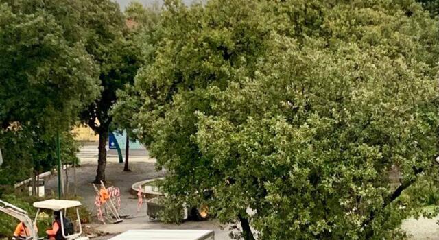 Lavori in corso in Piazza Dante, l'assessore ai Lavori Pubblici Enrico Ghiselli: «A breve splenderà di nuova luce in uno dei luoghi più importanti della nostra cittadina»