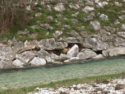 Cede argine fiume Versilia a Vallecchia. Comune chiede intervento
