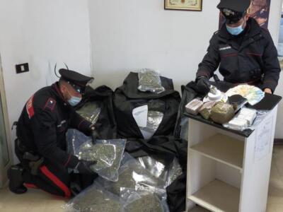 Forte odore di marijuana, scovato box con 50 kg di droga. Arrestato un soggetto
