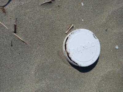 In tre anni raccolte 150 quintali di plastica, esercito Fare Verde in azione sulla spiaggia di Marina di Pietrasanta
