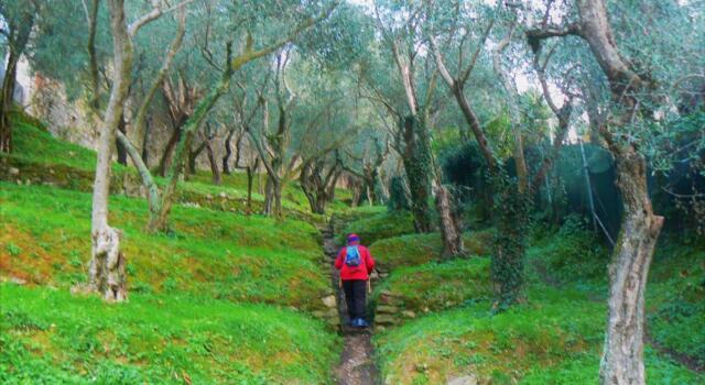 Tempo Libero: Pietrasanta scommette sulla vita all'aria aperta nell'era post Covid
