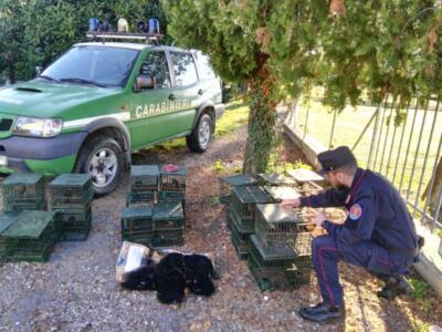 Caccia di frodo in media Valle del Serchio, denunciato bracconiere